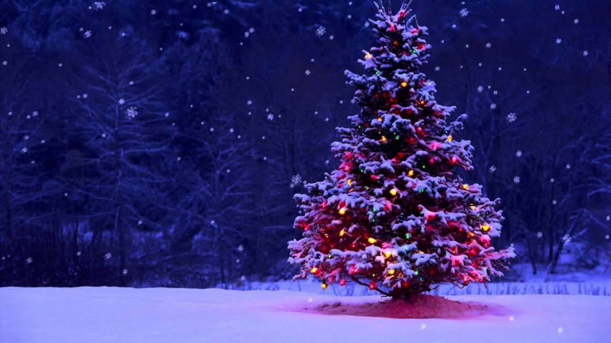 Tis the Christmasseason!
