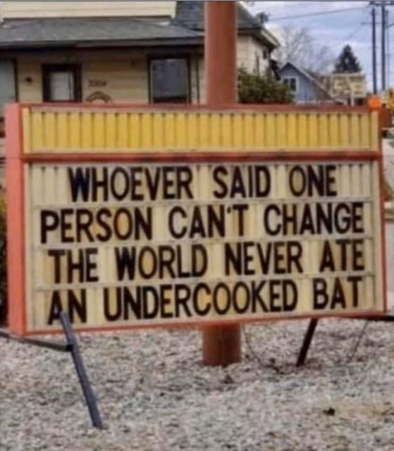Undercooked bat