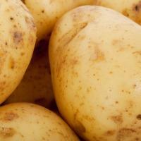 Goal: Crush A Raw Potato